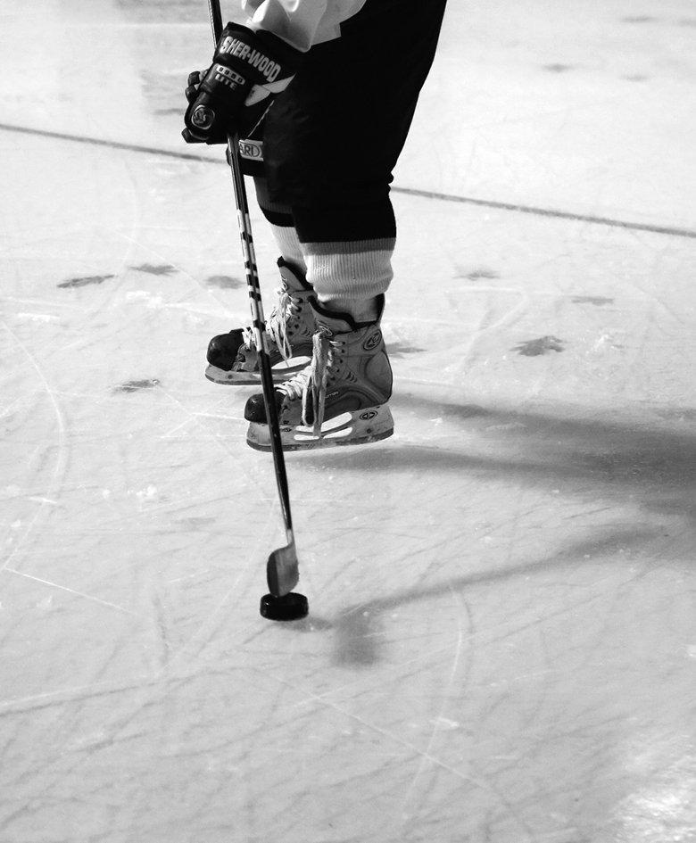 Marion Robin, Harengssec dans l'eau lisse, 2013-2014 Impressions numériques sur bâche micro perforée installées sous la glace  de la patinoire de Clermont-Ferrand, 1800 m2,  commande de Clermont Communauté dans le cadre de son action Art au Parvis