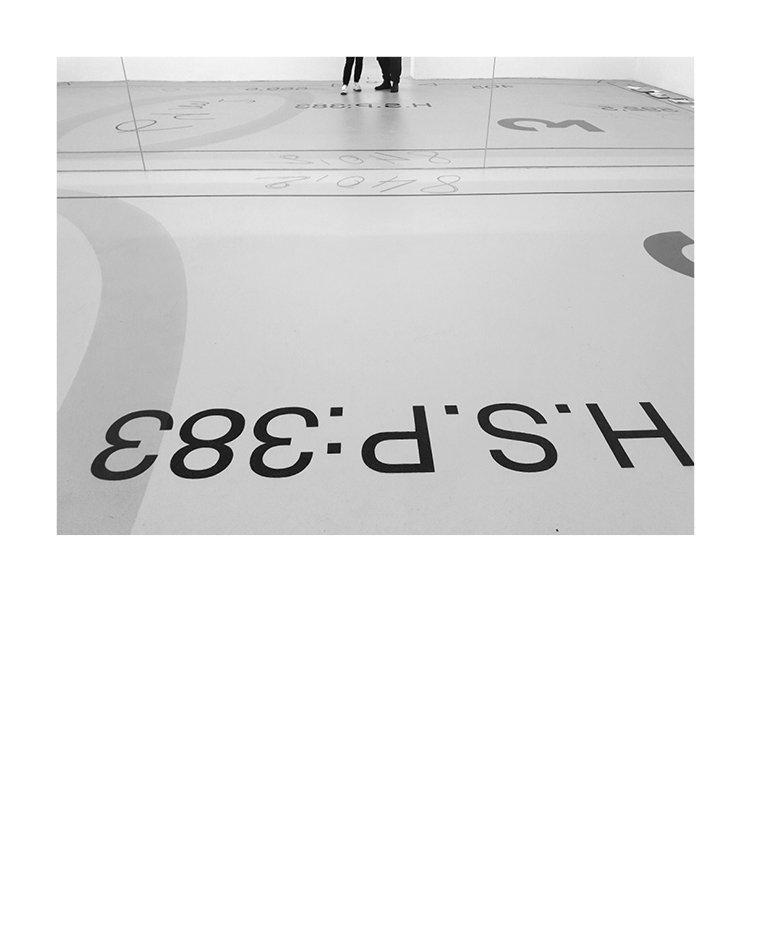 Marion Robin, Dans le plan, 2017 Sol peint, acrylique, liant teinté, vitrificateur, 64 m2, salle 3 de l'Institut d'Art Contemporain, Villeurbanne,  vue de l'exposition Rendez-vous / Biennale de Lyon 2017,  photographies: Blaise Adilon et Flora Moscovici; miroirs et courriers: Éléonore Pano-Zavaroni peinture glycéro, 300 x 40 x 5 cm, Étang de Rivery, Amiens, coproduction Projet  Hortillonnages Amiens 2012 –Art, villes & paysage