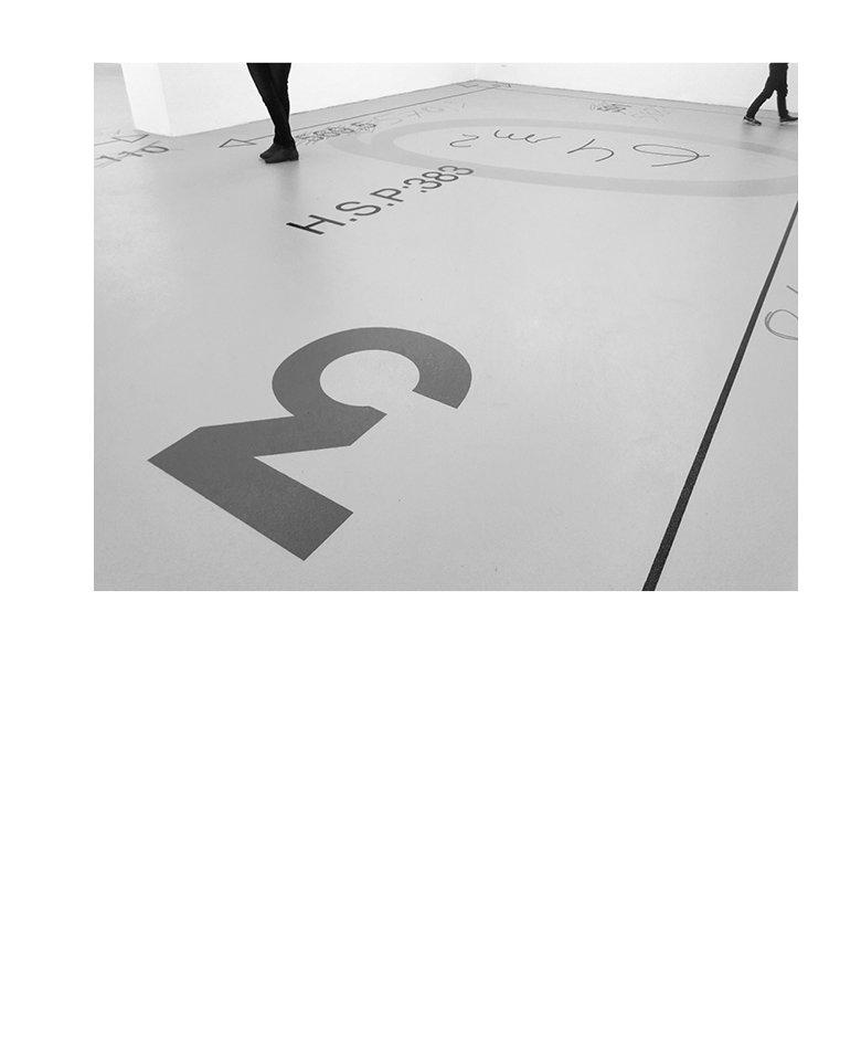 Marion Robin, Dans le plan, 2017 Sol peint, acrylique, liant teinté, vitrificateur, 64 m2, salle 3 de l'Institut d'Art Contemporain, Villeurbanne,  vue de l'exposition Rendez-vous / Biennale de Lyon 2017,  photographies: Blaise Adilon et Flora Moscovici; miroirs et courriers: Éléonore Pano-Zavaroni