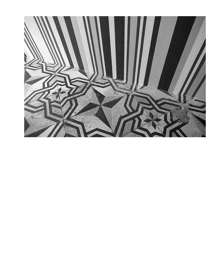 Marion Robin, Les roses des vents, 2017 Peinture murale, acrylique, 100 x 500 cm, la petite fabrique, Paris,  vue de l'exposition Hauteurs passagères – de la gravité et autres vertiges, sur une invitation de Béatrice Duport