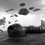 Tenesse Wiggler, The big fat Worm aka le Lombric Cosmique, 2009 - KLAT