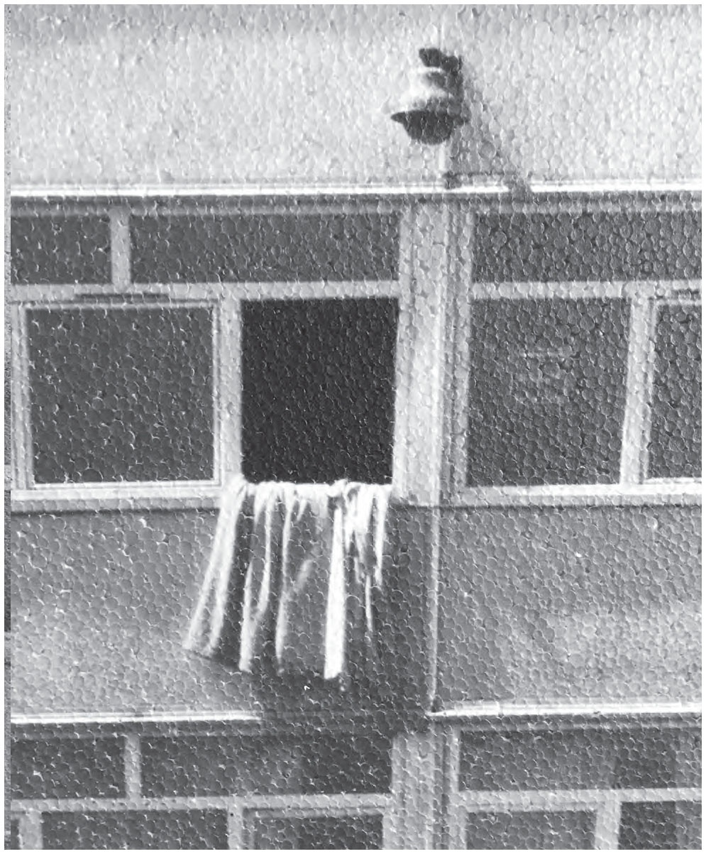 figure im11