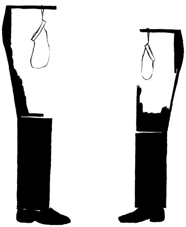 figure im25